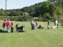 Welpen- und Junghundestunde am 24. August 2008